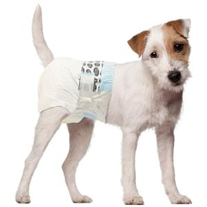 Female Dog Nappies & Puppy Diapers For Sale