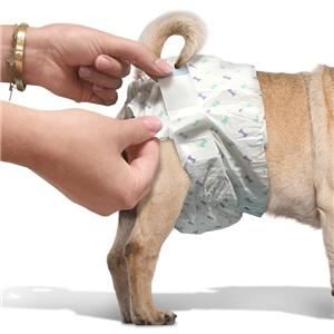 OUT! Pet Care Disposable Female Dog Diapers