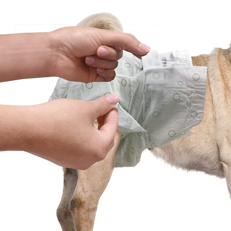 OUT! Pet Care Disposable Female Dog Diapers Manufacturers, OUT! Pet Care Disposable Female Dog Diapers Factory, Supply OUT! Pet Care Disposable Female Dog Diapers