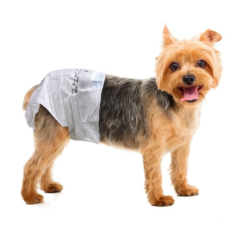 Comprar Calças descartáveis do cão fêmea,Calças descartáveis do cão fêmea Preço,Calças descartáveis do cão fêmea   Marcas,Calças descartáveis do cão fêmea Fabricante,Calças descartáveis do cão fêmea Mercado,Calças descartáveis do cão fêmea Companhia,