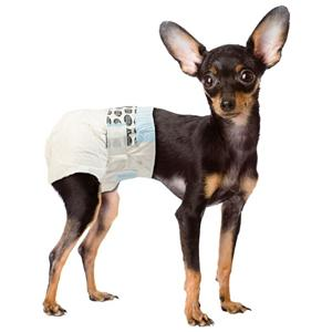 Dog Nappies For Females In Heat