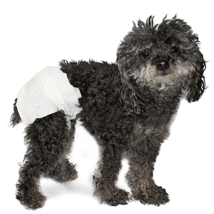 Dog Nappies For Females In Heat Manufacturers, Dog Nappies For Females In Heat Factory, Supply Dog Nappies For Females In Heat