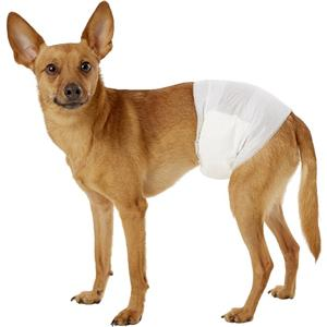 Disposable Dog Wraps Male Dog Diapers Belly Wraps