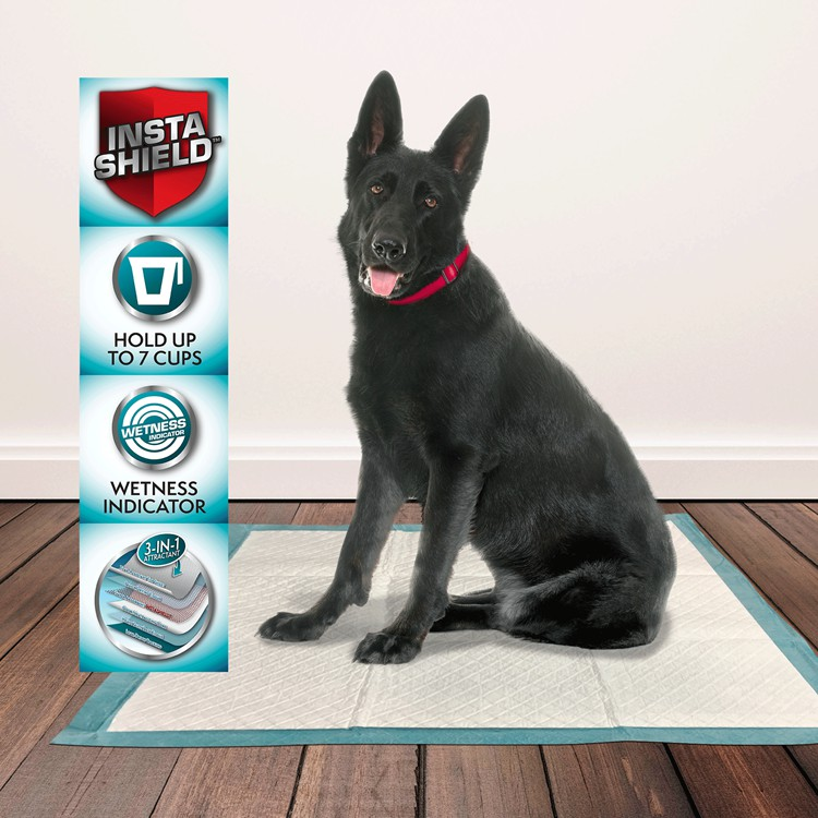 dog potty pads