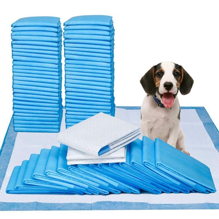 dog trainning pads
