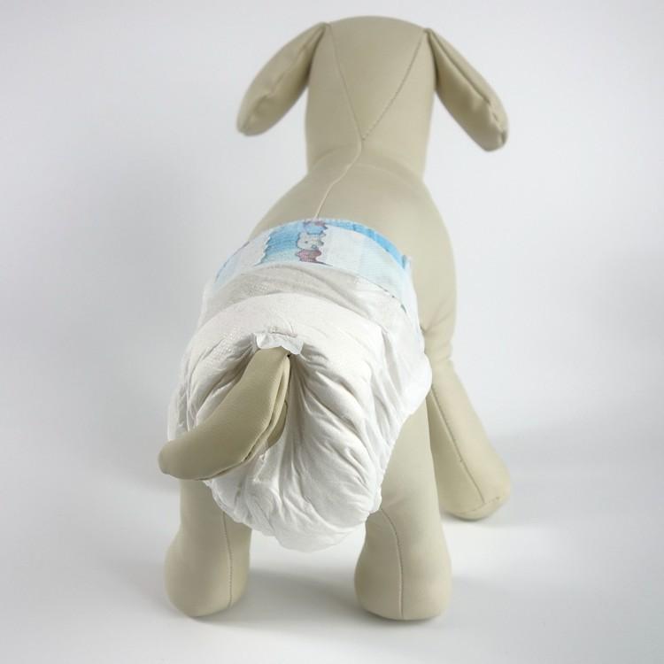 chihuahua diapers