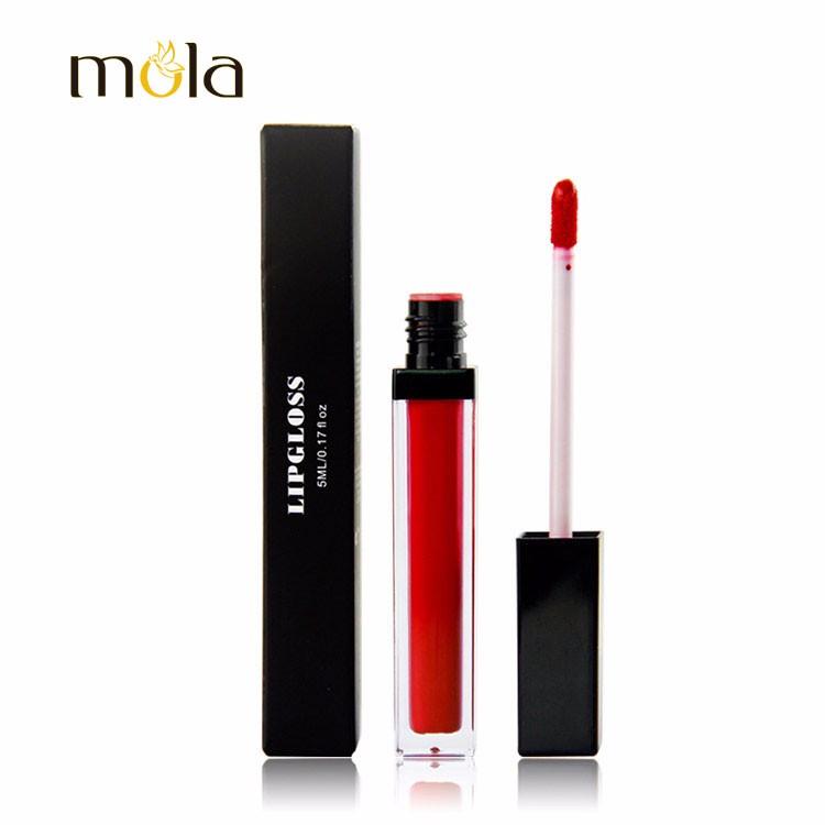 20 couleurs velours imperméable mat Lipgloss