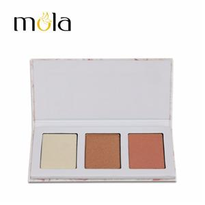 Shiny Highlighter Makeup Palette