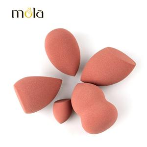 Natural Nude Colors Makeup Sponge Set For Facial
