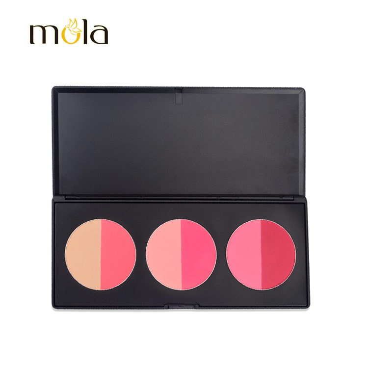 Palette Blush Maquillage de Private Label Duotone Blush