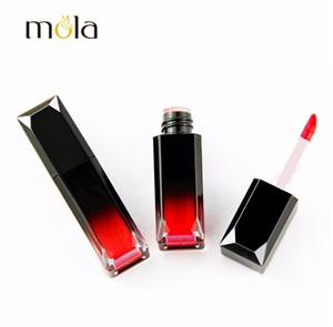 Luxury Long Lasting Glossy Lipstick