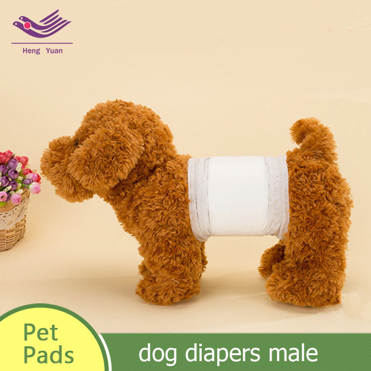 dog diapers male l small dog pet diapers S-XL