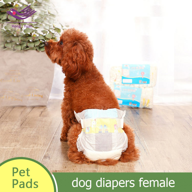 dog diapers female l dog pet incontinence products XS-XL