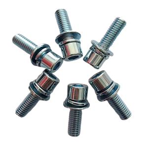 Cheese Head Screws with washer