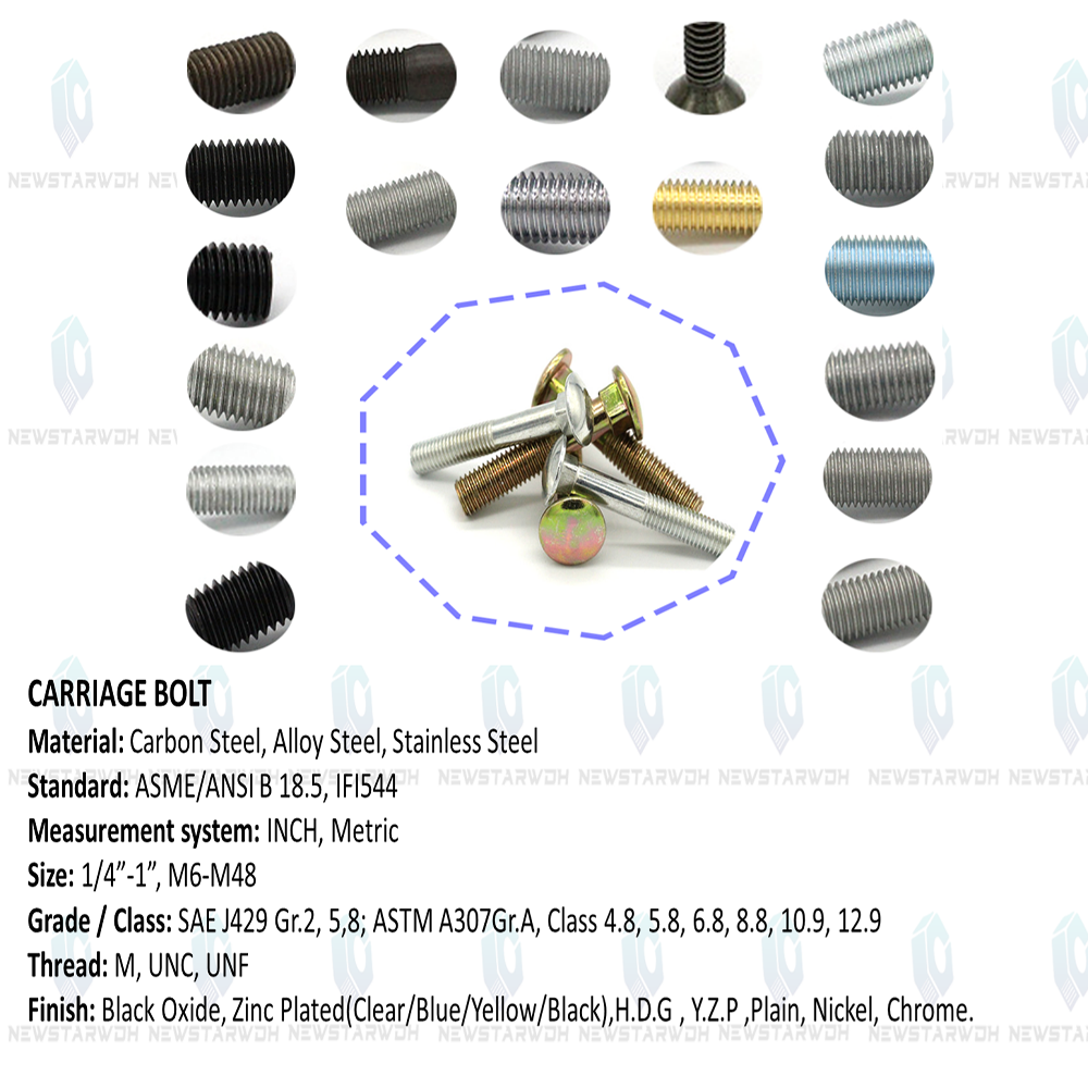 China m5 carriage bolt