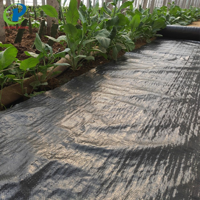 Landscape Fabric Under Gravel Best Weed Control Mat Manufacturers, Landscape Fabric Under Gravel Best Weed Control Mat Factory, Supply Landscape Fabric Under Gravel Best Weed Control Mat