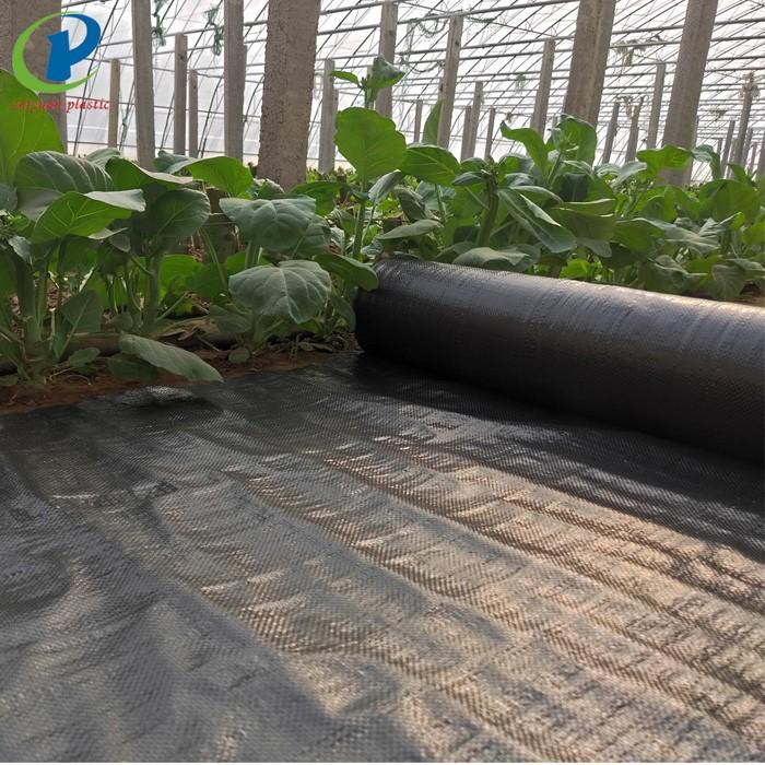 Biodegradable Preen Using Landscape Fabric Manufacturers, Biodegradable Preen Using Landscape Fabric Factory, Supply Biodegradable Preen Using Landscape Fabric