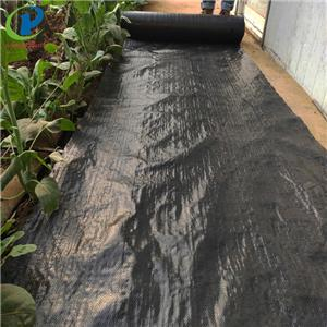 Installing Waterproof Landscape Fabric Under Mulch