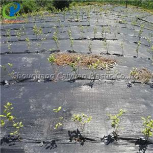 Woven Weed Control Fabric For Vegetable Garden