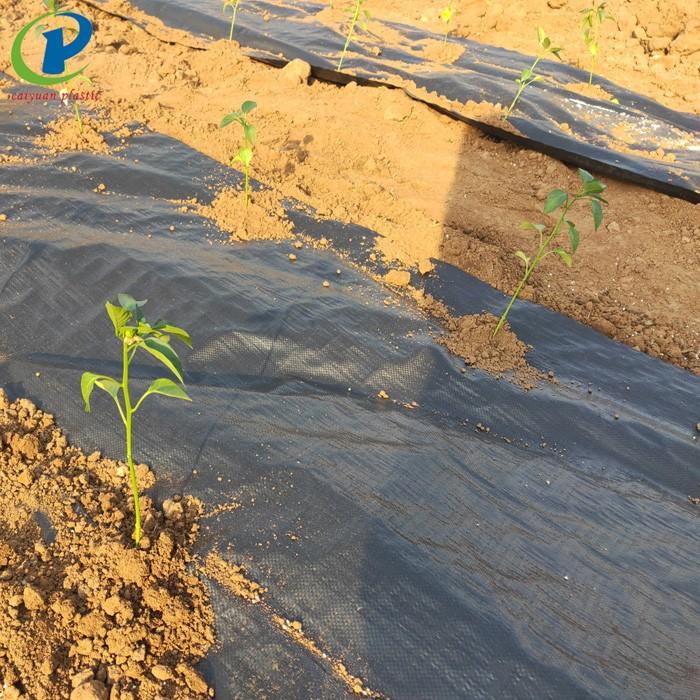 Biodegradable Plastic Mulch Film Manufacturers, Biodegradable Plastic Mulch Film Factory, Supply Biodegradable Plastic Mulch Film