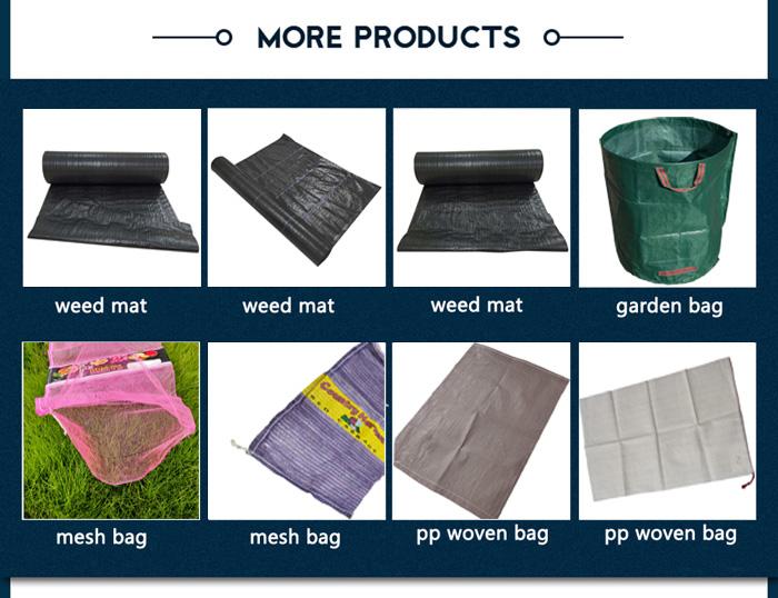pp leno mesh bag