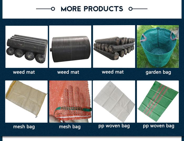 pp mesh bag