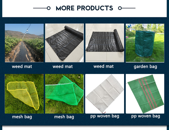 mesh drawstring bag