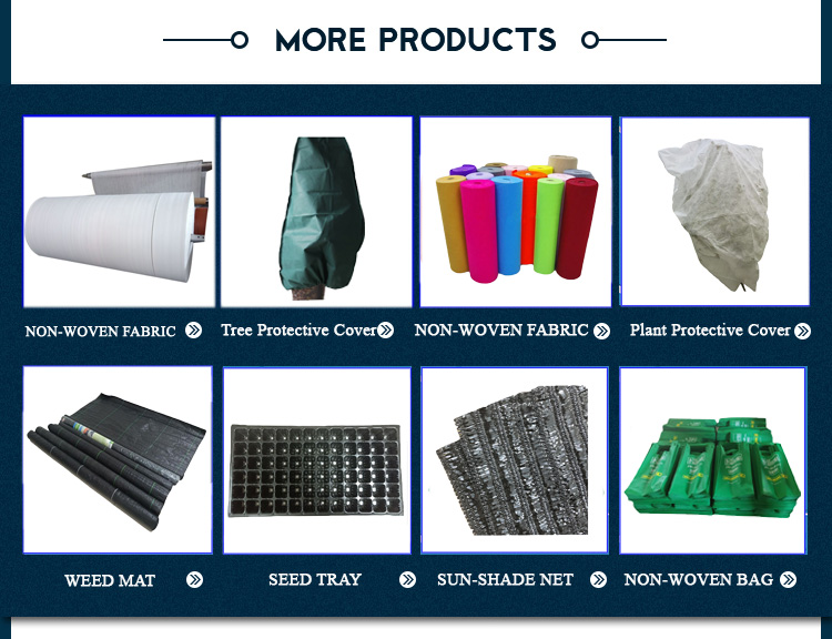 Biodegradable Nonwoven Fabric