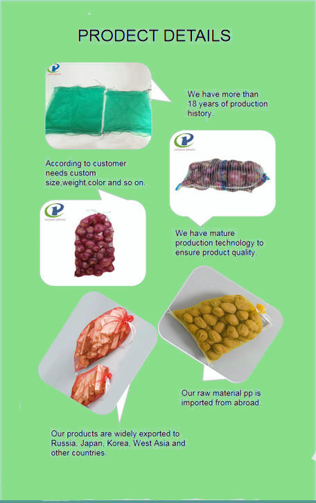 fruit mesh bag