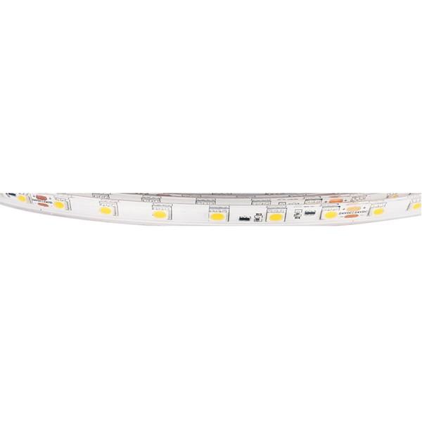 Гибкая светодиодная лента - Серия для индуктивного нагрева с постоянным током - 5050 60LED 10 мм 24V GL-24-L318