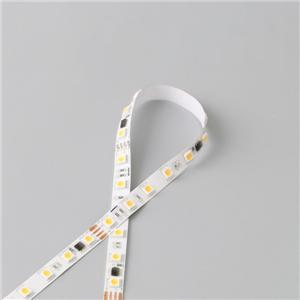 LED Flexible Strip - Pixel Control Series - 5050 60LED White SPI 24V GL-24-F965