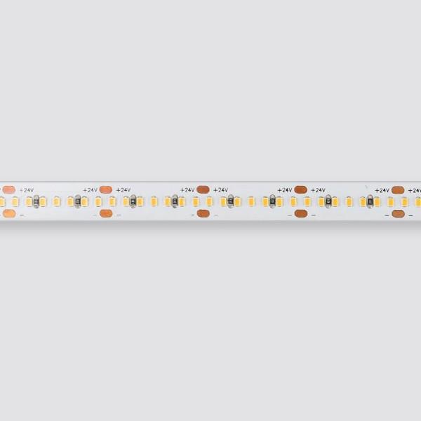 LED Flexible Strip - Ultra-Slim High-Density Series - 2216 350LED 10mm 24V GL-24-FE34