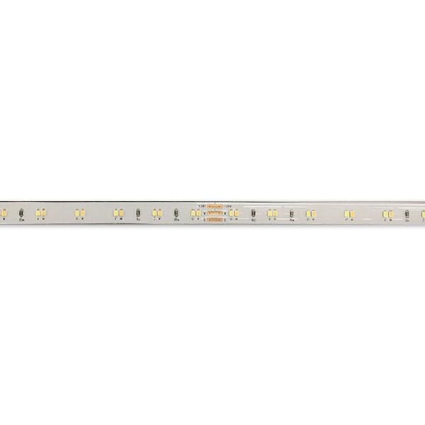 LED Flexible Strip - Ultra-Slim High-Density Series - 2216 CCT 140LED 8mm 24V GL-24-FE31