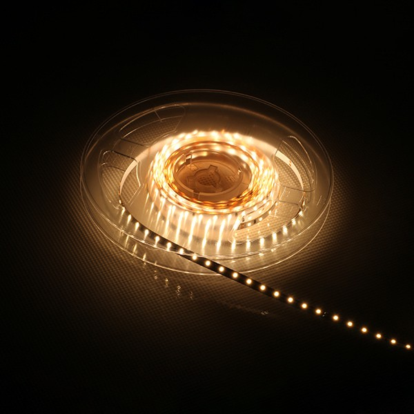 LED Flexible Strip - Silicone Extrusion Waterproof Series - 2216 120LED 4mm 12V GL-12-FE23