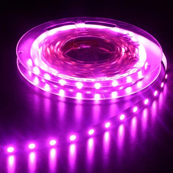 Гибкая светодиодная лента - серия Colorful-Light -Red-Green-Blue-Yellow-Pink-Amber 5050 30LED 12V GL-12-F18