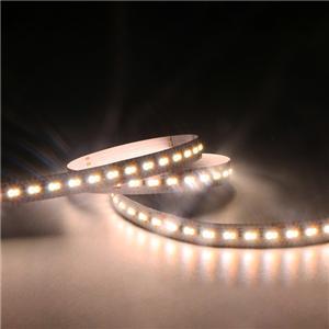 LED Flexible Strip - CCT Tunable Series - 2216 240LED 24V GL-24-FD29