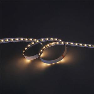 LED Flexible Strip - CCT Tunable Series - 2835 196LED 24V GL-24-LE63