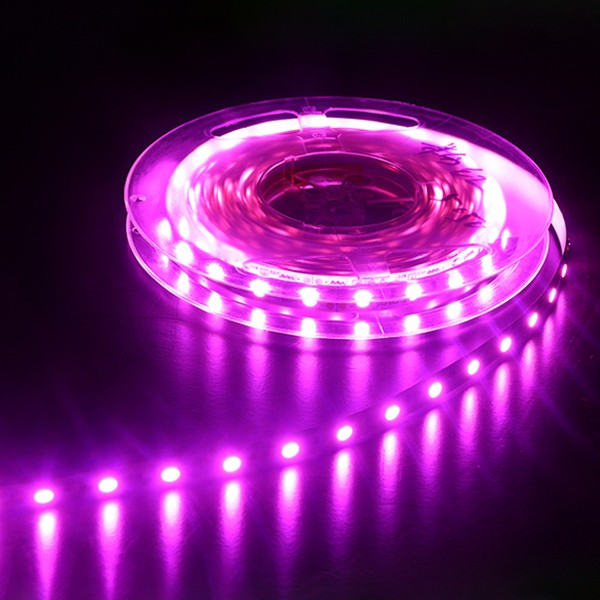 LED Flexible Strip - Colorful-Light Series - Red-Green-Blue-Yellow-Pink-Amber 3528 120LED 24V 10mm GL-24-F06
