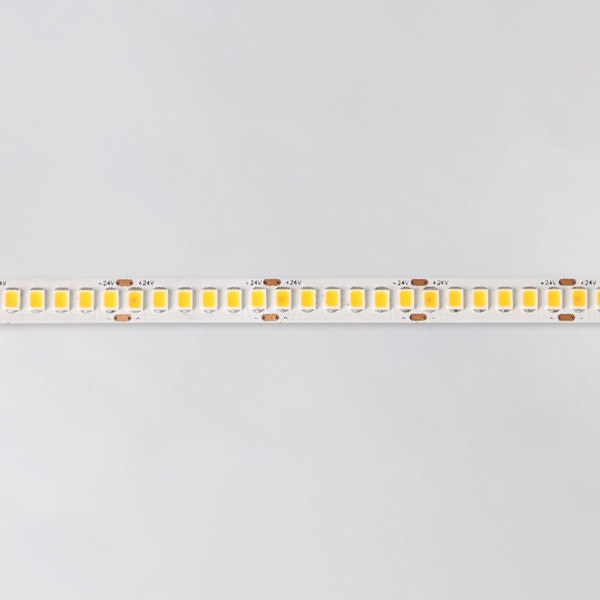 LED Flexible Strip - Built-In IC Series - 2835 240LED 24V GL-24-L488