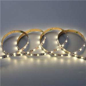 LED Flexible Strip - Short-Unit Cuttable Series - 2835 60LED 5V GL-5-F634