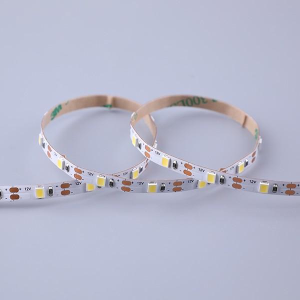 LED Flexible Strip - Short-Unit Cuttable Series - Ultra-Slim 2835 60LED 12V GL-12-FH79