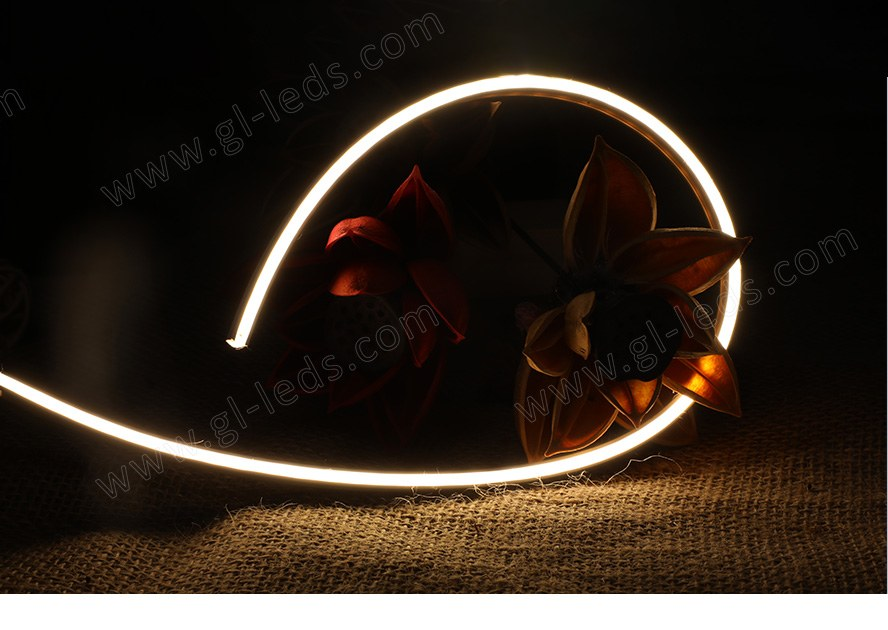 LED Neon Strip