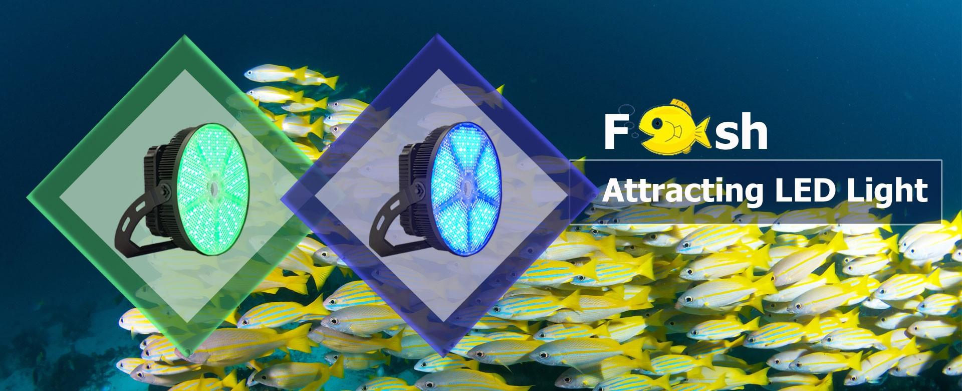 Lumière de poisson LED