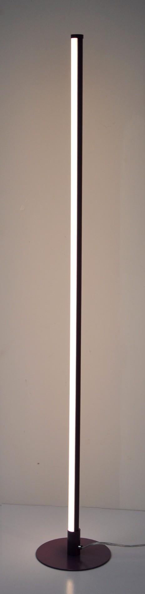 Contemporary Black Floor Lamp
