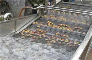 Ozone sterilization and freshener for vegetables and fruits washing