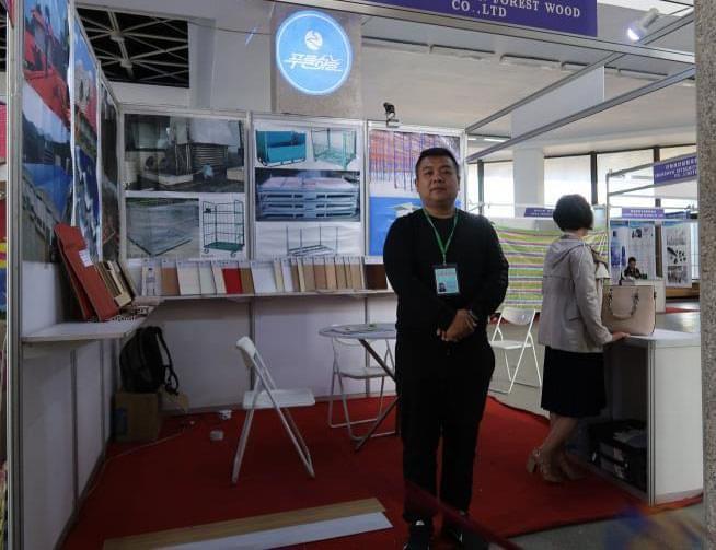 Exhibition Activities