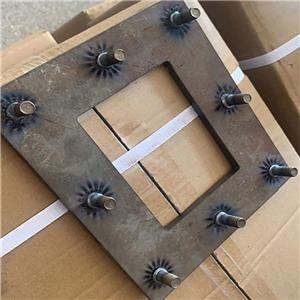10*30 welding studs sample for customers.