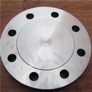 Forged Stainless Blind Flanges