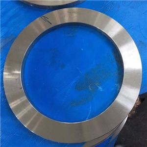 Forged Stainless Plate Flanges