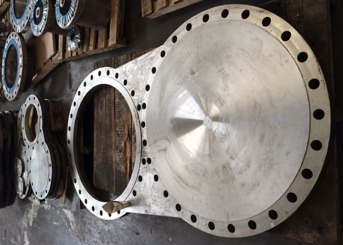 Stainless Special Flanges